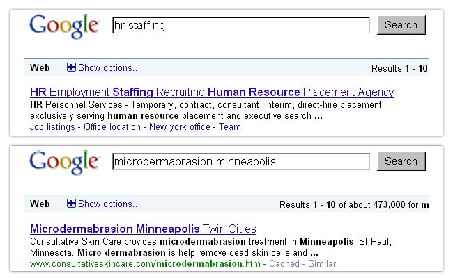 Web Search Engine Optimization Minneapolis St Paul